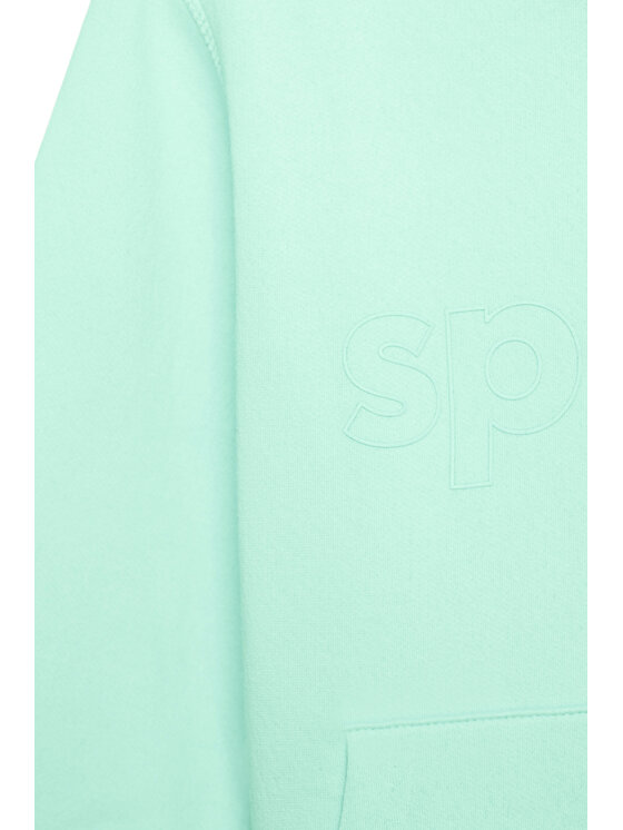 Sprandi Sprandi Bluza SS21-BLK004 Zielony Regular Fit