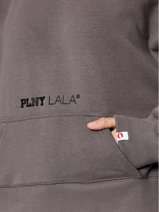 PLNY LALA PLNY LALA Bluza Miss PL-BL-MW-00001 Szary Relaxed Fit