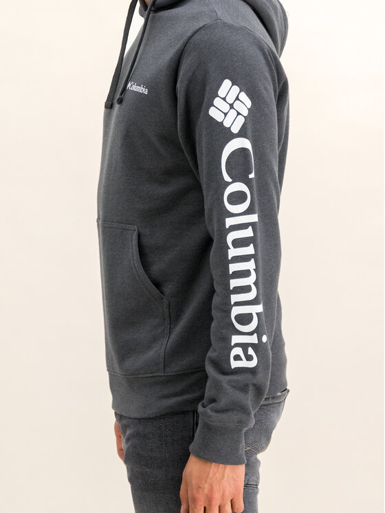 Columbia Columbia Mikina Sleeve Graphic Hoodie 1821014 Sivá Regular Fit