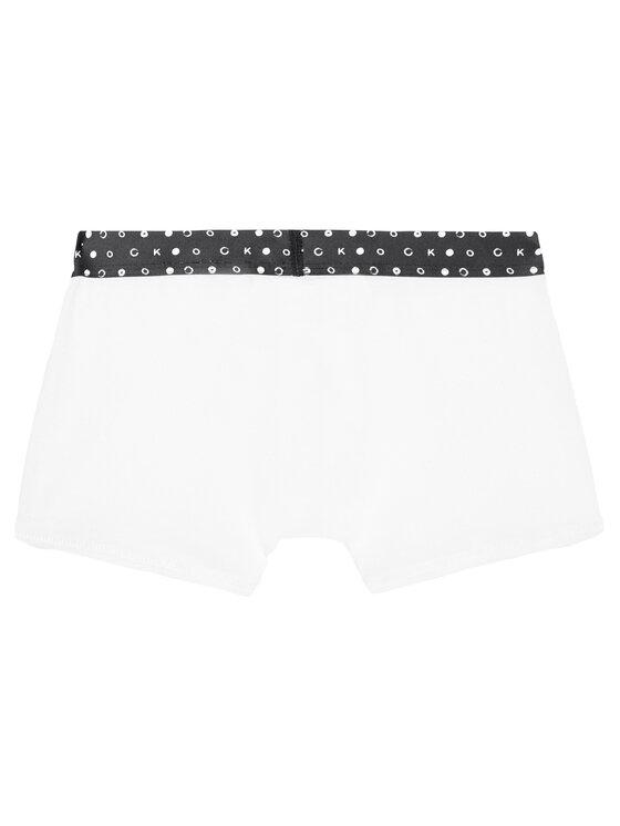 Calvin Klein Underwear Calvin Klein Underwear Sada 2 párů boxerek B70B700263 Barevná