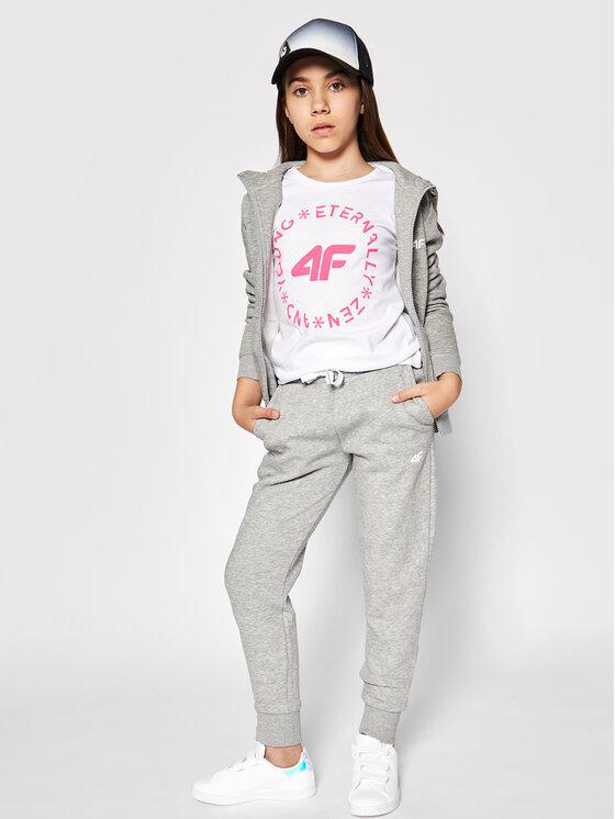 4F 4F Spodnie dresowe JSPDD001 Szary Regular Fit