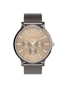 Timex Timex Hodinky Transcend TW2T74700 Stříbrná