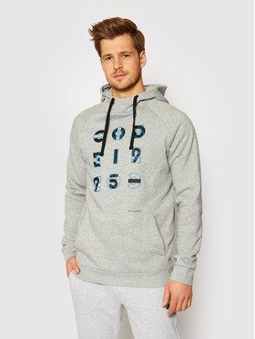 4F 4F Sweatshirt H4L21-BLM014 Grau Regular Fit