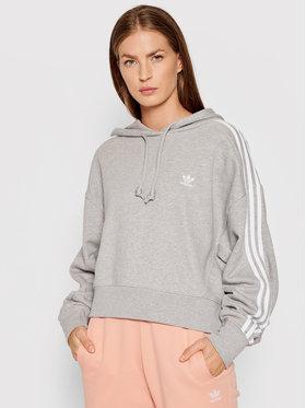 adidas adidas Sweatshirt adicolor Classics Crop H34615 Grau Relaxed Fit