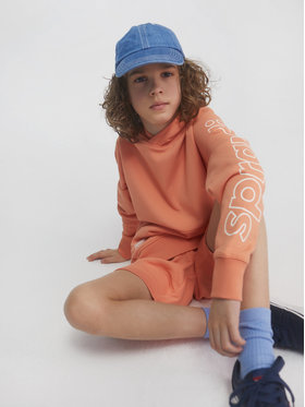 Sprandi Sprandi Bluza SS21-BLB001 Pomarańczowy Regular Fit