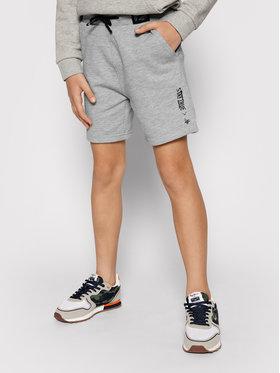 4F 4F Pantaloni scurți sport HJL21-JSKMD003B Gri Regular Fit