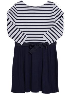 Polo Ralph Lauren Polo Ralph Lauren Každodenní šaty Stripe Solid 312720091001 Tmavomodrá Regular Fit