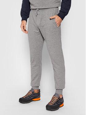 CMP CMP Spodnie dresowe 31D4337M Szary Regular Fit