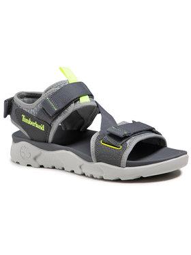 Timberland Timberland Sandále Ripcord 2 Strap Sandal TB0A2AFA0331 Sivá