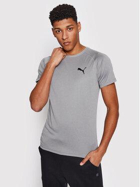 Puma Puma Funkčné tričko Rtg Tee 585827 Sivá Slim Fit