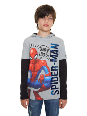 Desigual Desigual Sweatshirt Moore 20SBSK05 Grau Regular Fit