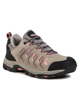 Sprandi Sprandi Chaussures de trekking 210109S Gris
