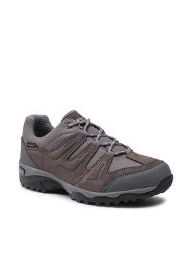 Jack Wolfskin Jack Wolfskin Παπούτσια πεζοπορίας Traction 2 Texapore Low W 4033991 Γκρι