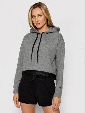 4F 4F Sweatshirt H4L21-BLD011 Grau Regular Fit