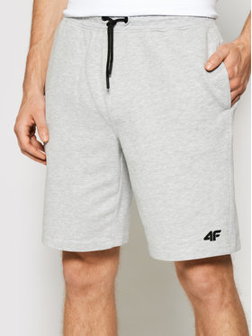 4F 4F Pantaloncini sportivi NOSH4-SKMD001 Grigio Regular Fit