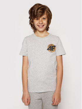 4F 4F T-Shirt HJL21-JTSM012 Szary Regular Fit