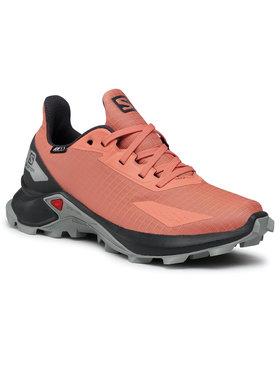 Salomon Salomon Chaussures Alphacross Blast Cswp J 411227 12 0V Orange