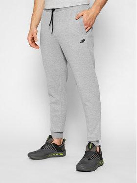 4F 4F Spodnie dresowe H4L21-SPMD010 Szary Regular Fit