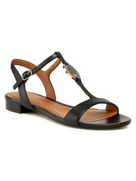 Emporio Armani Emporio Armani Sandale X3P640 XF438 00002 Negru