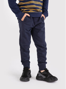 Coccodrillo Coccodrillo Παντελόνι φόρμας ZC1120113EVB Σκούρο μπλε Regular Fit