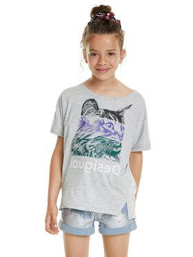 Desigual Desigual Marškinėliai Blackpool 20SGTK52 Pilka Regular Fit