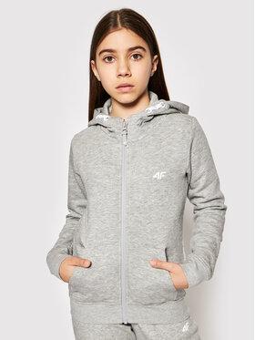 4F 4F Sweatshirt HJL21-JBLD001 Grau Regular Fit