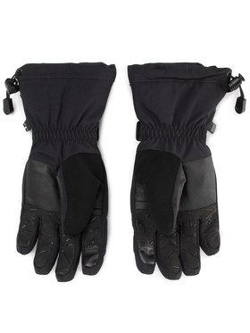 Spyder Spyder Lyžařské rukavice Overweb Gtx GORE-TEX 197004 Černá