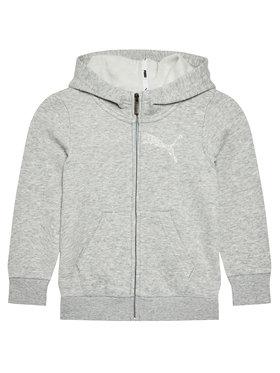 Puma Puma Sweatshirt Graphic 583291 Gris Regular Fit