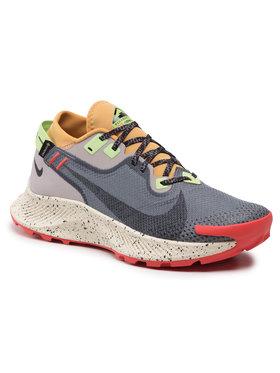 Nike Nike Boty Pegasus Trail 2 Gtx GORE-TEX CU2016 002 Šedá