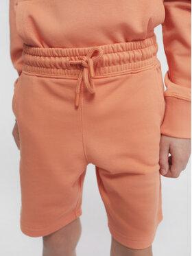 Sprandi Sprandi Pantaloni scurți sport SS21-SHB002 Portocaliu Regular Fit