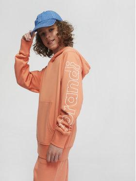 Sprandi Sprandi Džemperis SS21-BLB001 Oranžinė Regular Fit