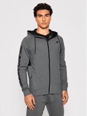 4F 4F Sweatshirt D4Z20-BLMF111 Grau Regular Fit