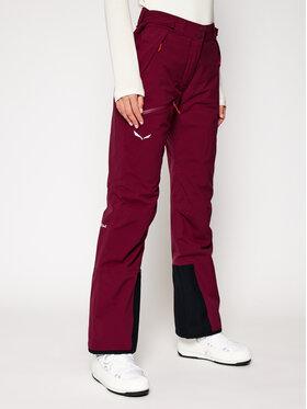 Salewa Salewa Pantalon de ski Antelao Beltovo Twr Pnt 28252 Bordeaux Regular Fit