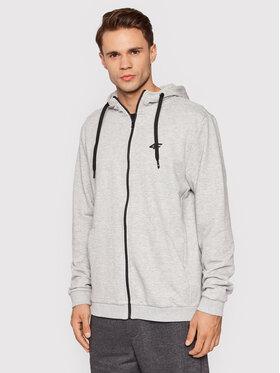 4F 4F Sweatshirt BLM353 Grau Regular Fit
