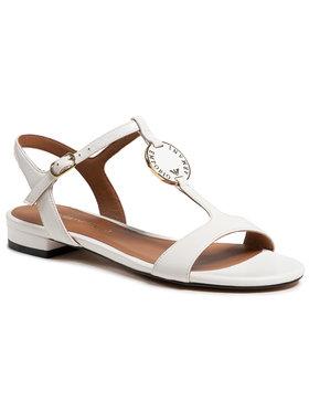 Emporio Armani Emporio Armani Sandale X3P640 XF438 00001 Alb