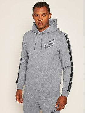 Puma Puma Sweatshirt Amplified Hoodie Fl 583517 Grau Regular Fit
